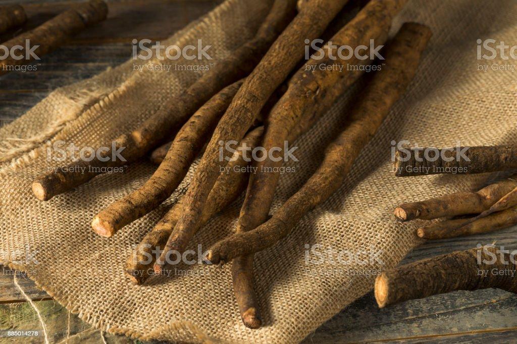 Raw Brown Organic Burdock Root - foto stock