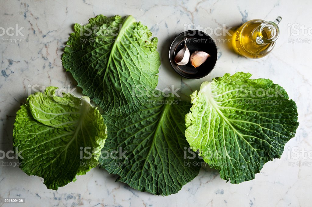 raw cabbage stock photo