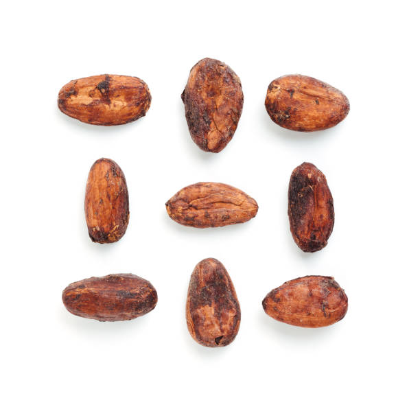 Raw cacao bean and chocolate piece isolated white Raw cacao beans in creative layout pattern on white background. Isolated on white with clipping path. cocoa bean stock pictures, royalty-free photos & images