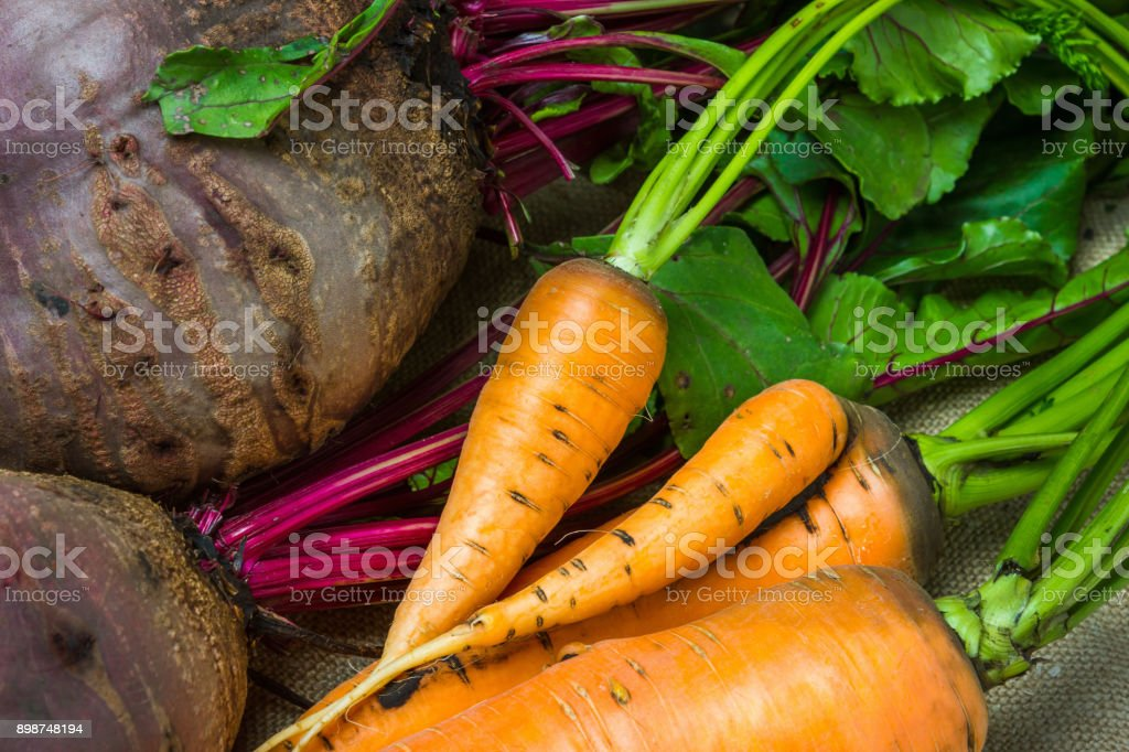 raw carrots and beets stock photo