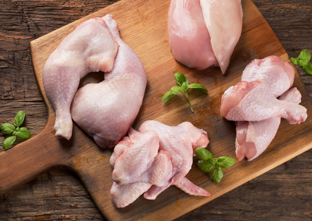 Raw chicken meat stock photo