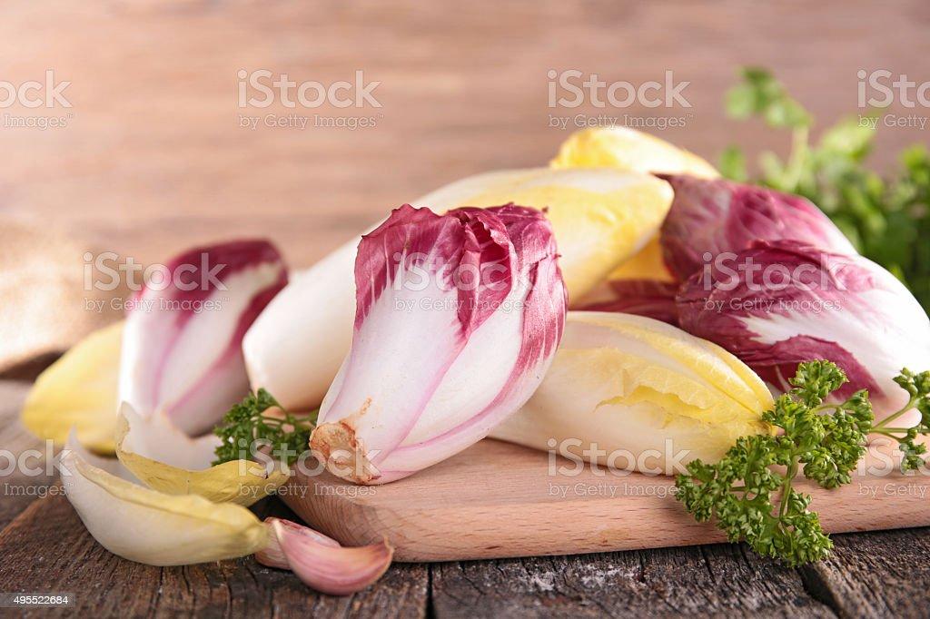 raw chicory stock photo