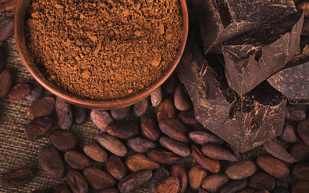 Raw cocoa beans stock photo