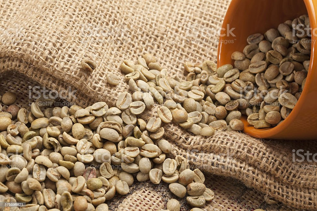 Raw coffee bean royalty-free stock photo