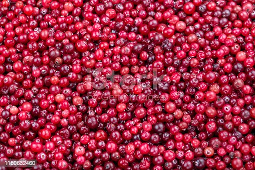raw cranberries closeup scattered as a background. place for text
