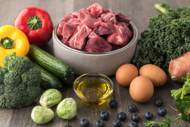 raw dog food ingredients - dog food imagens e fotografias de stock