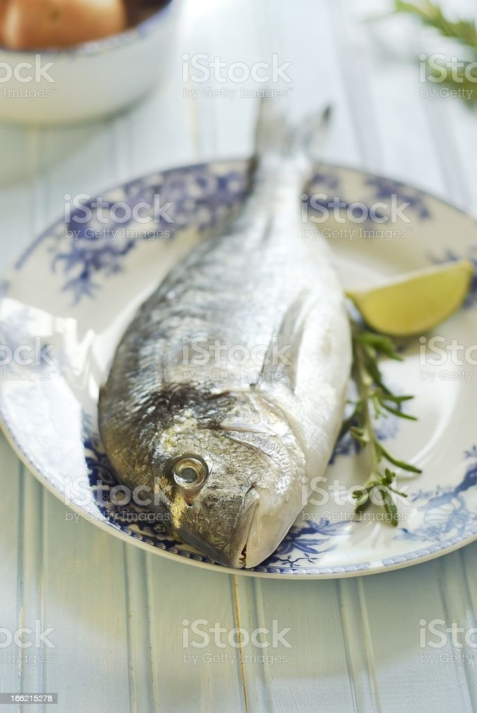 Raw dorado with rosemary and lime royalty-free stock photo