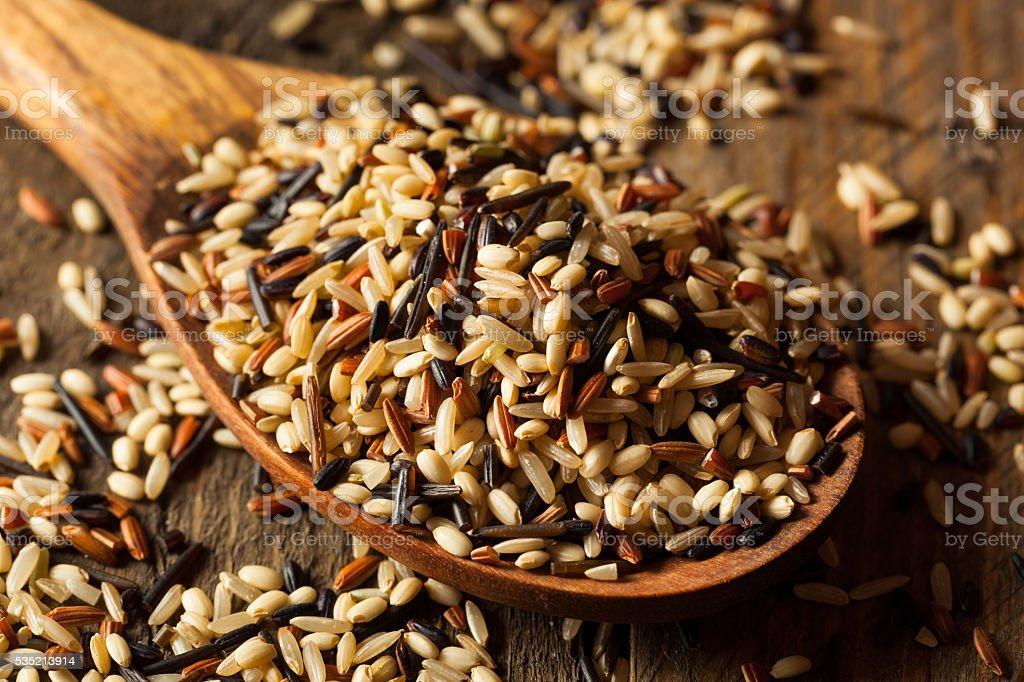 Raw Dry Organic Wild Rice stock photo
