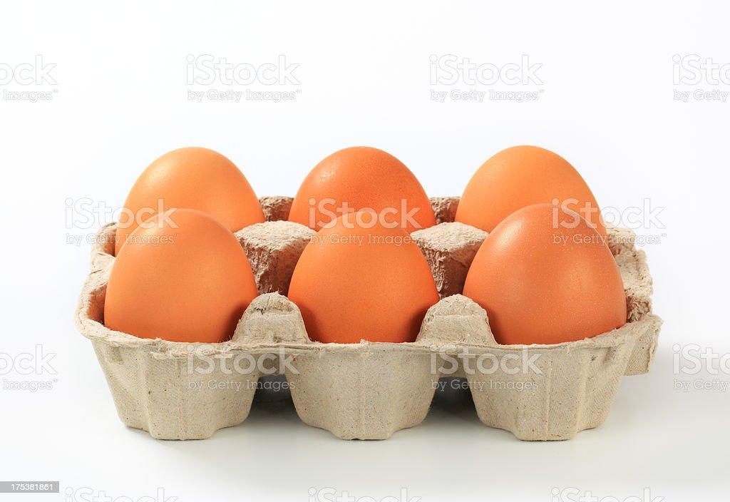 Raw eggs in a carton stock photo