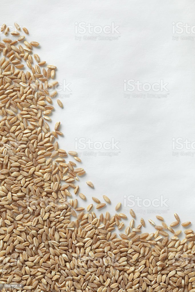 Raw Farro Grains on Cooking Parchment Background royalty-free stock photo