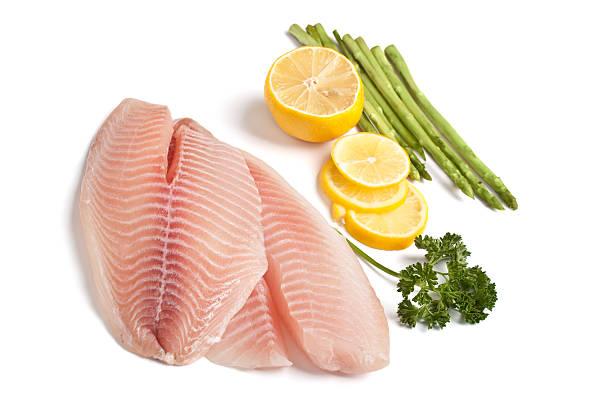 raw filleted tilapia fish stock photo