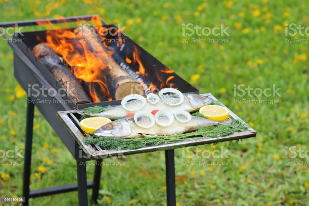 Raw fish before cooking. - Royalty-free Barbecue Stock Photo