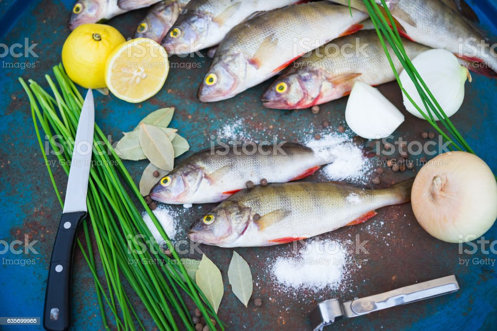 Raw fish. Fish prepared for cooking. Perch and spices. royalty-free stock photo