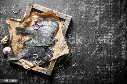 Raw fish flounder on tray with onion rings and garlic cloves. On dark rustic background