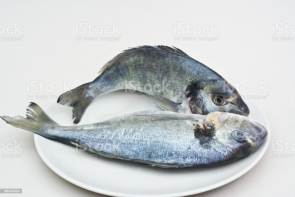 Raw fishes royalty-free stock photo