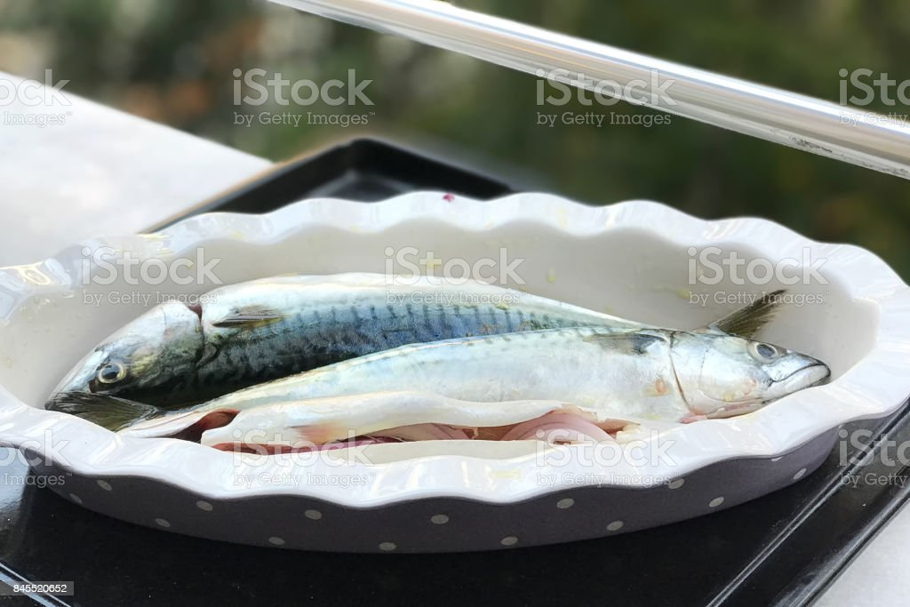 Raw fishes with onion and oil stock photo