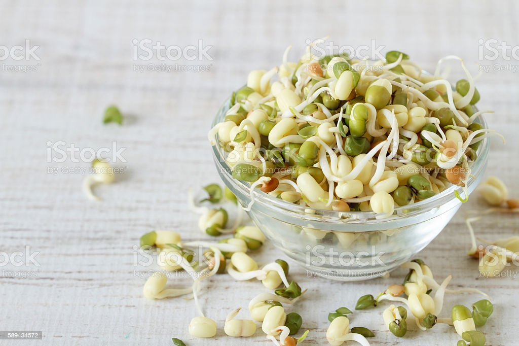 Raw food : bean sprouts stock photo