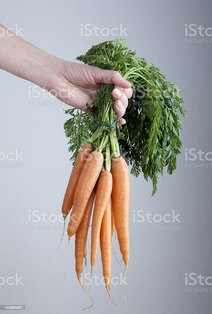 Raw food stock photo