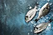 Raw fresh organic dorado or sea bream on ice cubes