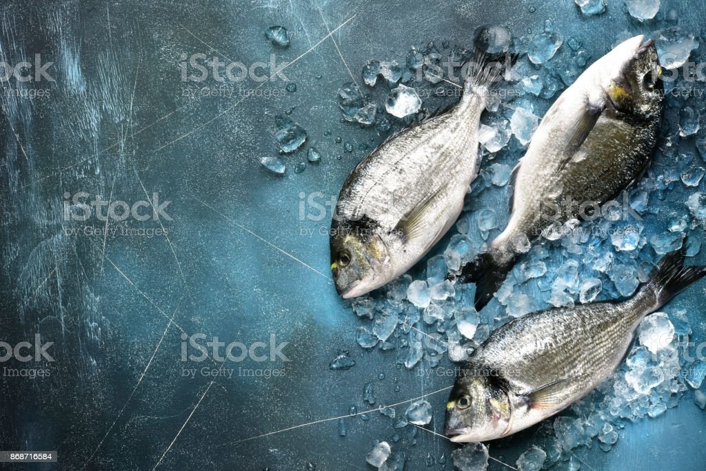 Raw fresh organic dorado or sea bream on ice cubes stock photo