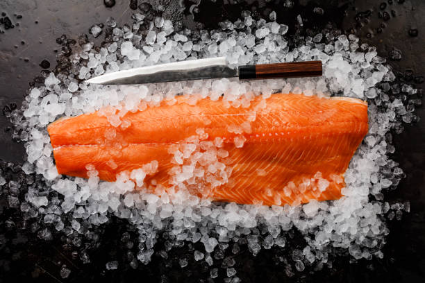 Raw Fresh salmon fish fillet on ice and knife on dark background stock photo