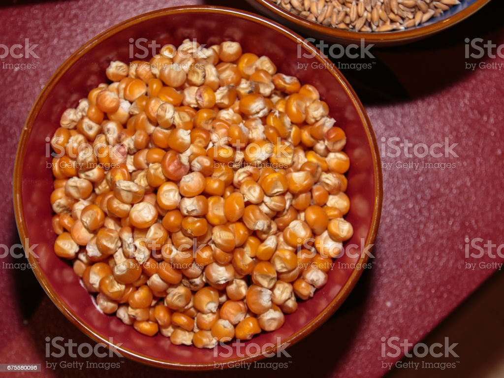 Raw Grains of Corn inside Bowl, Orange Kernels Top View stock photo