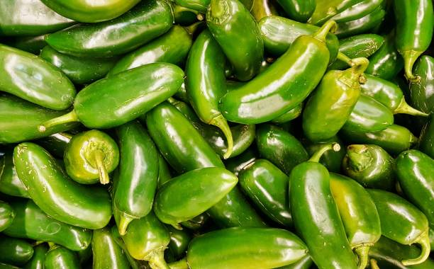 Raw green Jalapeno peppers on a supermarket display. Raw green Jalapeno peppers in a pile on a market stand. It has a Scoville heat unit of around 3500. It is also the state pepper of Texas and can be prepared a number of ways in food dishes. jalapeno pepper stock pictures, royalty-free photos & images
