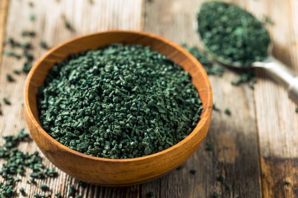 rå grön ekologisk algea spirulina - spirulinabakterie bildbanksfoton och bilder