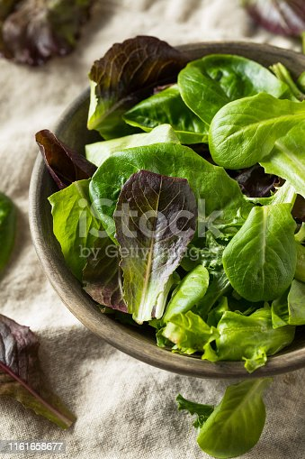 Raw Green Organic Baby Spring Lettuce in a Bowl