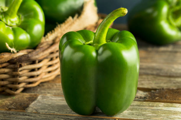 roher grüner bio paprika - grüne paprikaschoten stock-fotos und bilder