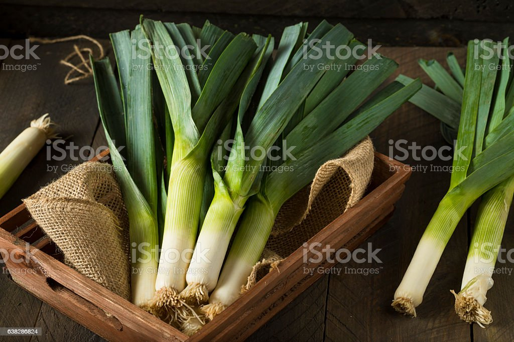 Raw Green Organic Leeks stock photo