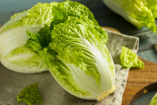 Raw Green Organic Napa Cabbage Raw Green Organic Napa Cabbage Ready to Use brassica rapa stock pictures, royalty-free photos & images