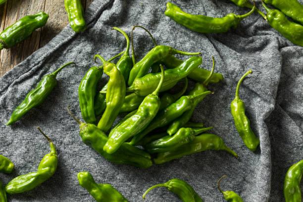 Raw Green Organic Shishito Peppers stock photo