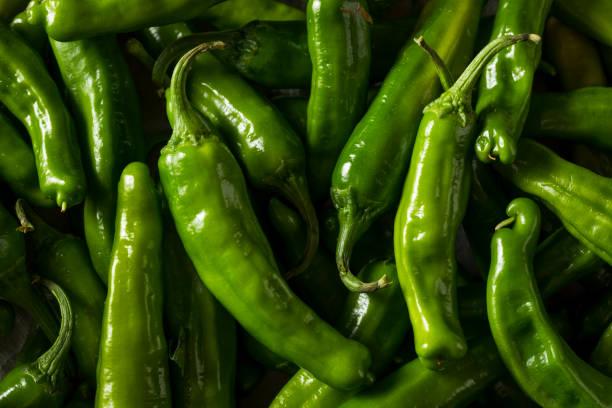 rohe grüne bio shishito paprika - grüne paprikaschoten stock-fotos und bilder
