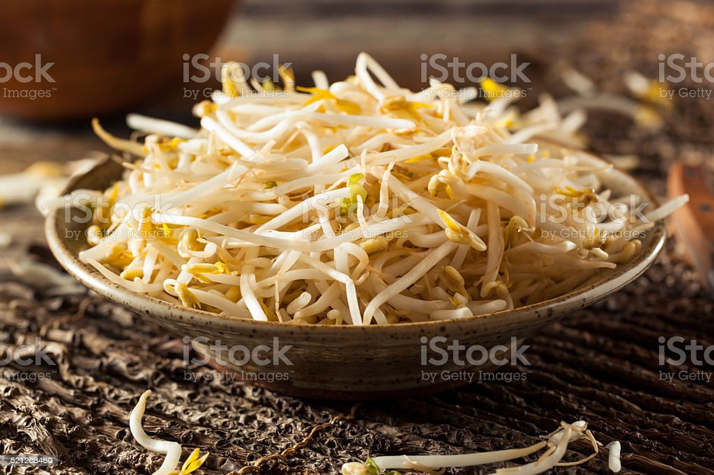 Raw Healthy White Bean Sprouts stock photo