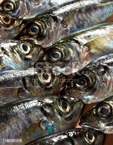 635931692istockphoto Raw horse mackerels fishes. Preparations for cooking mackerel fishes. Vertical close-up shot. 1180281475
