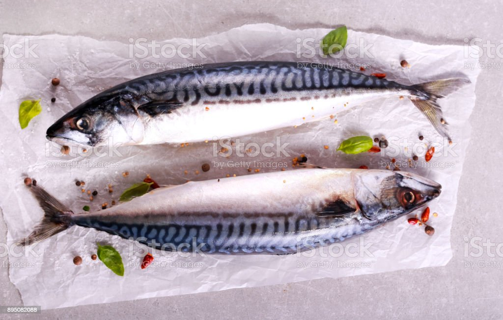 Raw mackerel fish with spices stock photo