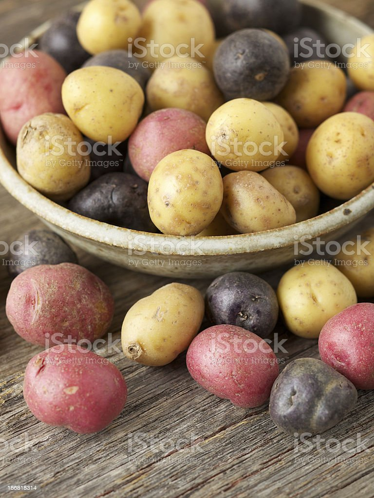Raw multi-colored small potatoes in ceramic bowl on wood stock photo