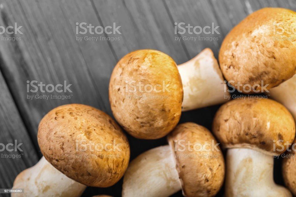 raw mushrooms champignons closeup stock photo