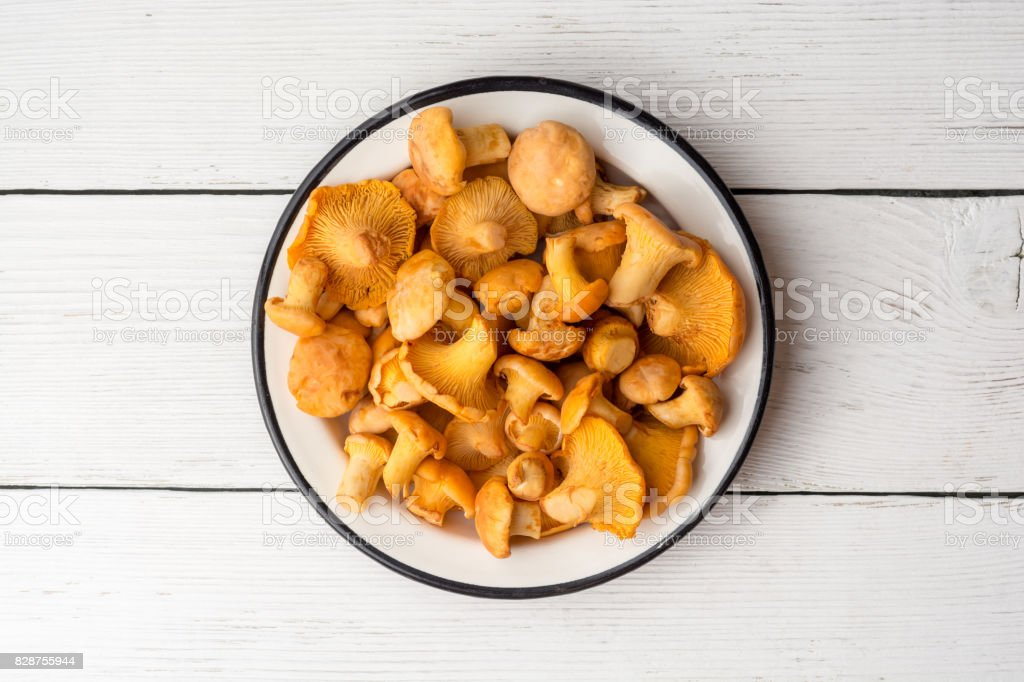 Raw mushrooms chanterelle in plate on white wooden background. stock photo
