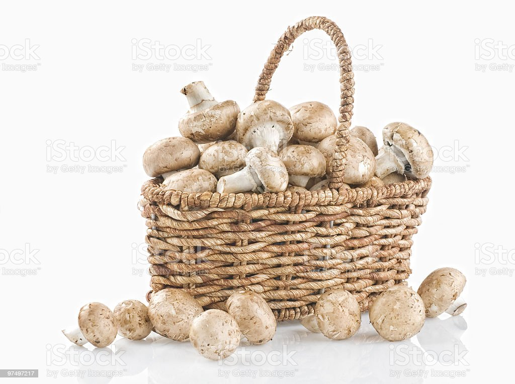 Raw mushrooms in a basket on white royalty-free stock photo
