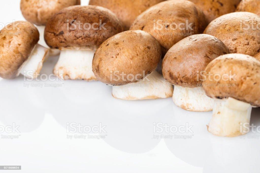 raw mushrooms champignons stock photo