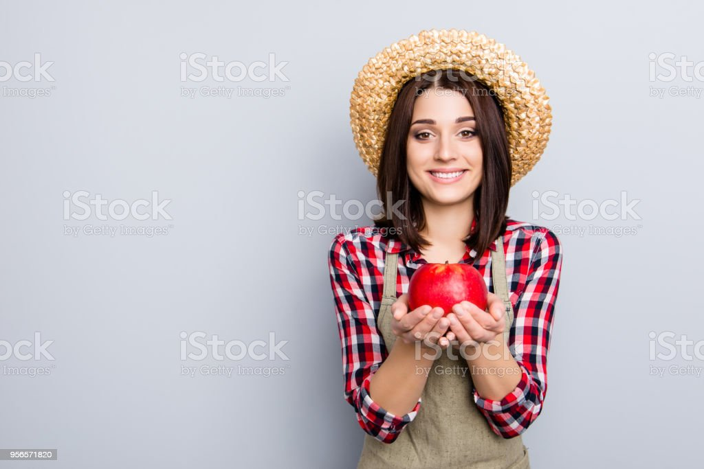 Raw non-gmo gmo-free ideal give people person concept. Portrait of glad cute excited female gardener showing holding in hands eating presenting yummy tasty apple isolated on gray background stock photo