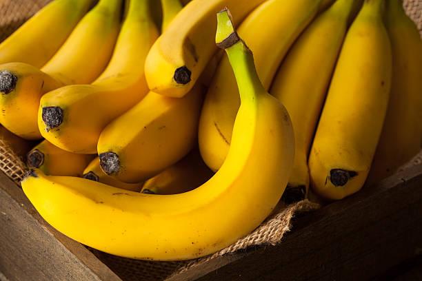 날것 유기 번치 of 바나나 스톡 사진