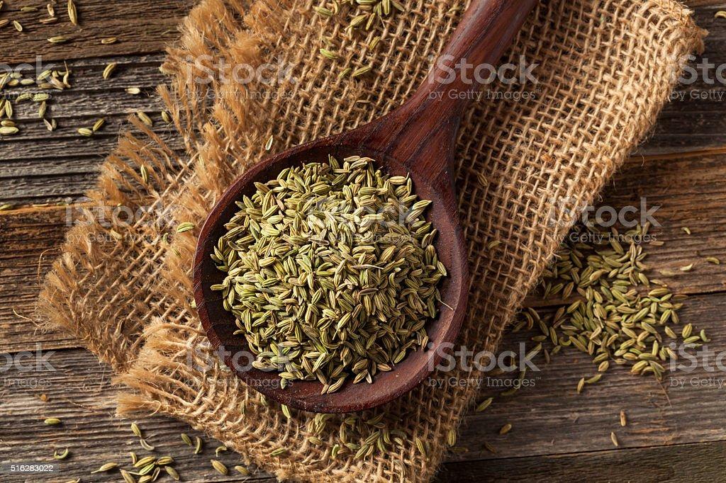 Pure bio aux graines de fenouil - Photo