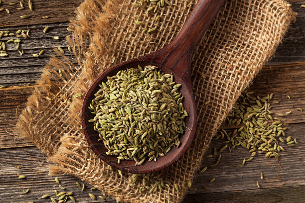 raw organic fennel Seed raw organic fennel Seed Ready to Use fennel stock pictures, royalty-free photos & images