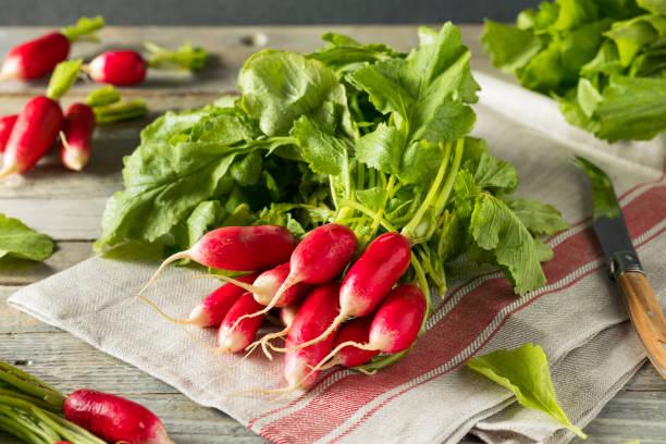 Raw Organic Fresh French Radishes stock photo