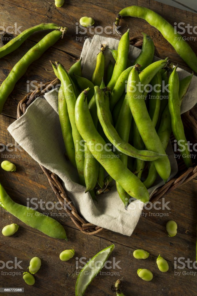 Raw Organic Fresh Green Fava Beans stock photo