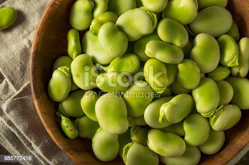 istock Raw Organic Fresh Green Fava Beans 685772416