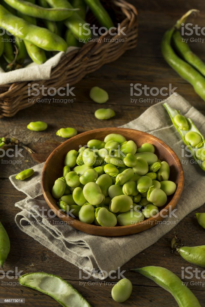 Raw Organic Fresh Green Fava Beans royalty-free stock photo